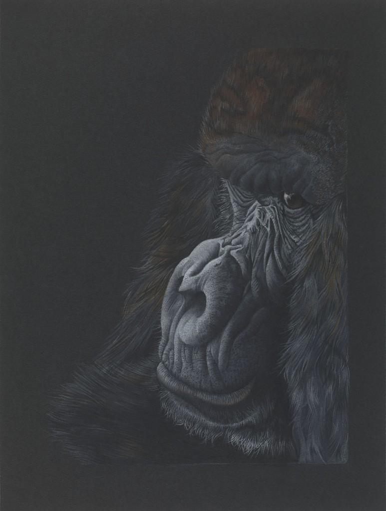 Contemplation - Pastel by Amanda Jones